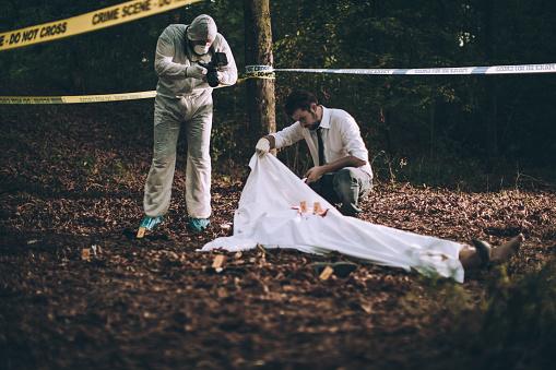 雪「Investigation of a murder」:スマホ壁紙(1)