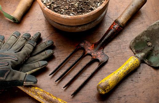 Protective Glove「garden tools」:スマホ壁紙(17)