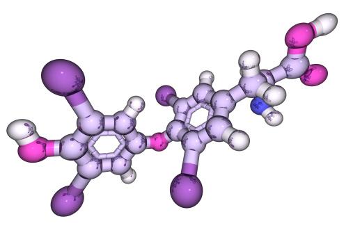 Thyroxine「DrugModel: Thyroxine」:スマホ壁紙(12)