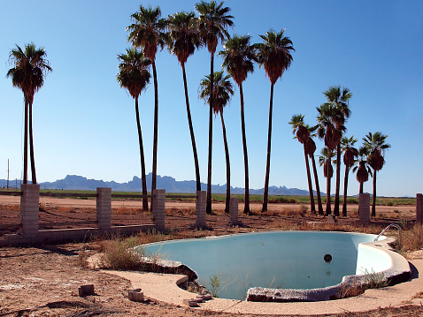 Arid Climate「USA, Arizona, Harquahala Valley, Empty abandoned swimming pool with palm trees on background」:スマホ壁紙(14)