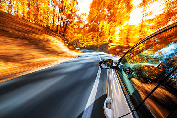 Driving in the fall:スマホ壁紙(壁紙.com)
