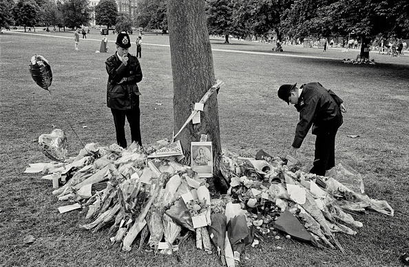 flower「Funeral of Diana, Princess of Wales」:写真・画像(9)[壁紙.com]