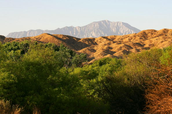 "Land「""Green Path"" Energy Corridor Raises Environmental Dilemma」:写真・画像(11)[壁紙.com]"