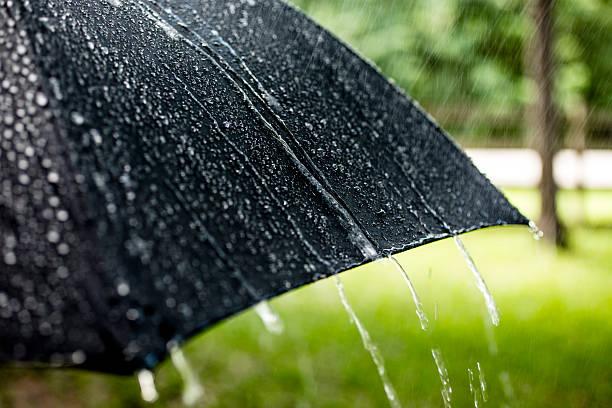 雨の日です。 Raindrops 落ちるにブラックのパラソルをお過ごしください。 春、夏ます。:スマホ壁紙(壁紙.com)