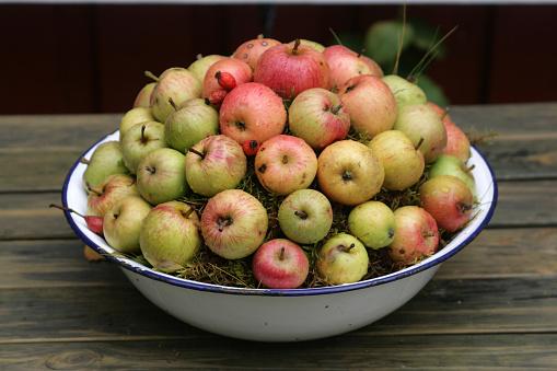 Apple「bowl with apples」:スマホ壁紙(3)