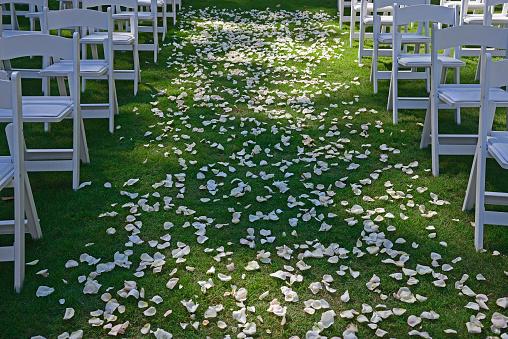 結婚「USA, Georgia, Atlanta, Flower petals on green lawn for wedding ceremony, chairs on sides, symmetrical image」:スマホ壁紙(9)