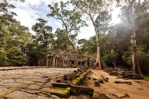 Ta Prohm Temple「Cambodia, Siem Reap, Angkor, Ta Prohm Temple」:スマホ壁紙(7)