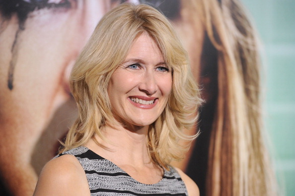 "HBO「Premiere Of HBO's ""Enlightened"" - Arrivals」:写真・画像(17)[壁紙.com]"