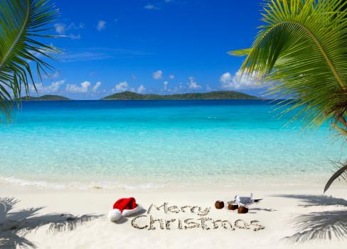 Santa Hat「Tropical Christmas」:スマホ壁紙(2)