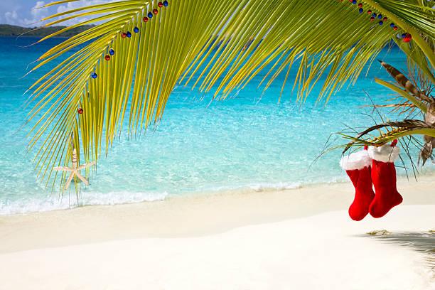 tropical Christmas in the Caribbean:スマホ壁紙(壁紙.com)