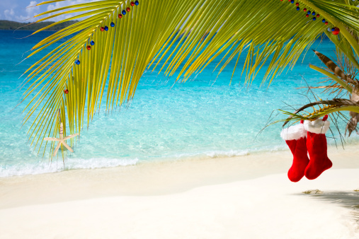 島「カリブ海のトロピカルなクリスマス」:スマホ壁紙(15)
