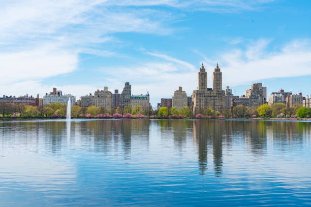Architectures of Central Park West Historic District reflect to Central Park Reservoir in New York. Rows of Cherry blossoms trees are full-bloomed:スマホ壁紙(壁紙.com)