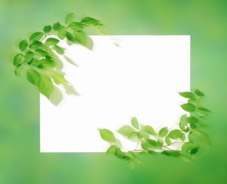 Multiple Exposure「Leaf Frame」:スマホ壁紙(7)