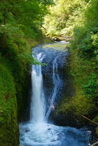 Oneonta Gorge「Waterfall」:スマホ壁紙(17)
