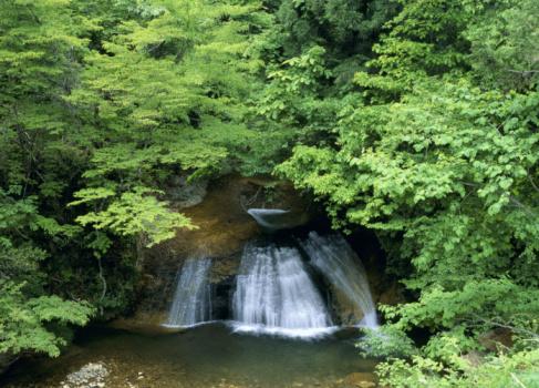 Takayama City「Waterfall」:スマホ壁紙(5)