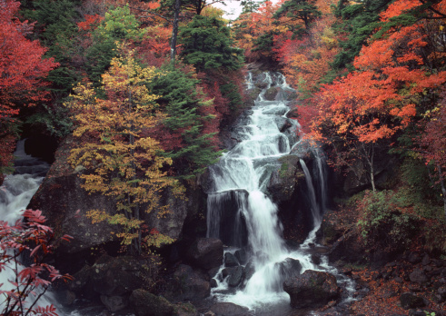 Nikko City「Waterfall」:スマホ壁紙(13)