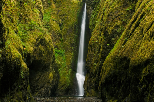 Oneonta Gorge「Waterfall, (long exposure)」:スマホ壁紙(1)