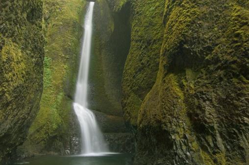 Oneonta Gorge「Waterfall, (long exposure)」:スマホ壁紙(12)