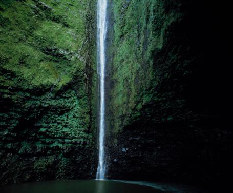 Algae「Waterfall」:スマホ壁紙(3)