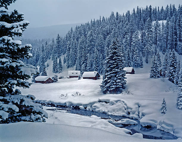 snowy log cabins in ethereal moonlight:スマホ壁紙(壁紙.com)