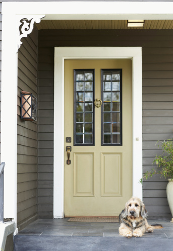 Doorway「Dog lying on front porch」:スマホ壁紙(11)