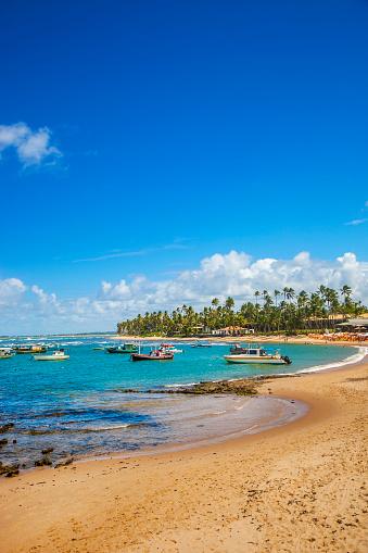 Palapa「Praia do Forte in Bahia」:スマホ壁紙(15)