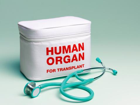 Green Background「Human organ transplant bag and stethoscope」:スマホ壁紙(8)