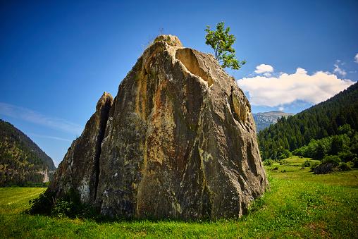 European Alps「Switzerland, Grisons, Zillis, big boulder and small tree」:スマホ壁紙(5)