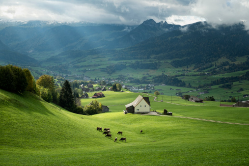 Pasture「Switzerland, Canton of St. Gallen, Swiss alps」:スマホ壁紙(3)