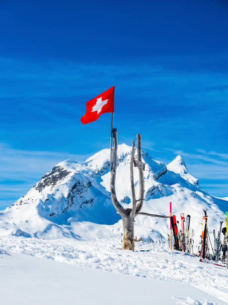 Switzerland, Canton of Bern, Grindelwald, Swiss flag with Reeti in background:スマホ壁紙(壁紙.com)