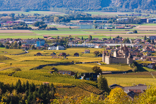 Vaud Canton「Switzerland, Canton Vaud, Aigle, vineyards and Aigle Castle」:スマホ壁紙(11)
