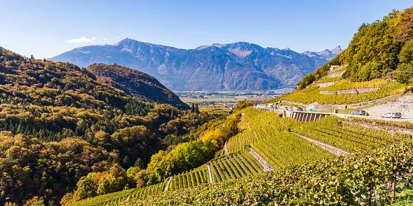 Vaud Canton「Switzerland, Canton Vaud, Aigle, vineyard」:スマホ壁紙(14)