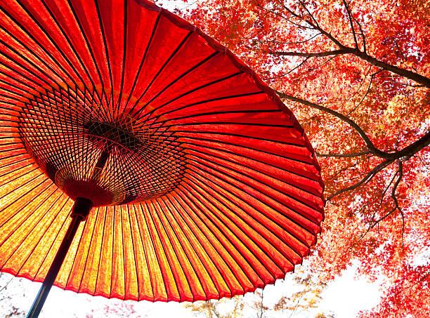 傘と紅葉の壁紙