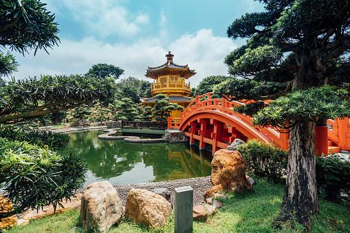 Water Lily「Nan Lian Garden in Hong Kong」:スマホ壁紙(16)