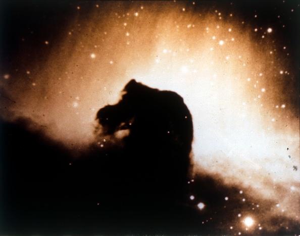 Space and Astronomy「Horsehead Nebula In Orion. Creator: Nasa.」:写真・画像(7)[壁紙.com]