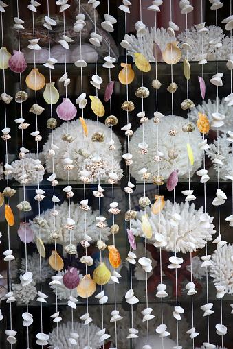 snails「A shop that sells corals. Coral necklaces. Guraidhoo Island. Maldives」:スマホ壁紙(11)
