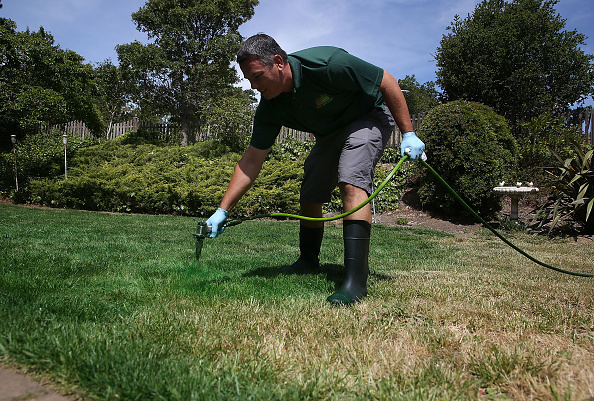 Environmental Conservation「California Company Offers Lawn Painting Service To Turn Drought-Stricken Dead Lawns Green」:写真・画像(4)[壁紙.com]