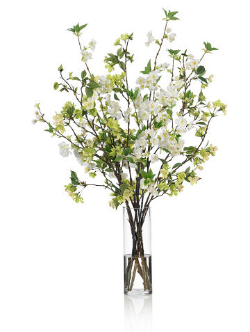 Dogwood「Large Spring bouquet with green and white flowers on white background」:スマホ壁紙(19)