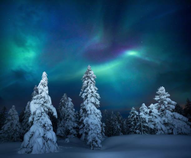 Winter Night:スマホ壁紙(壁紙.com)