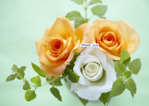 父の日「Roses with message」:スマホ壁紙(11)