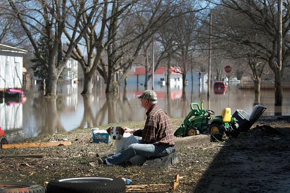 動物「Flooding Continues To Cause Devastation Across Midwest」:写真・画像(5)[壁紙.com]