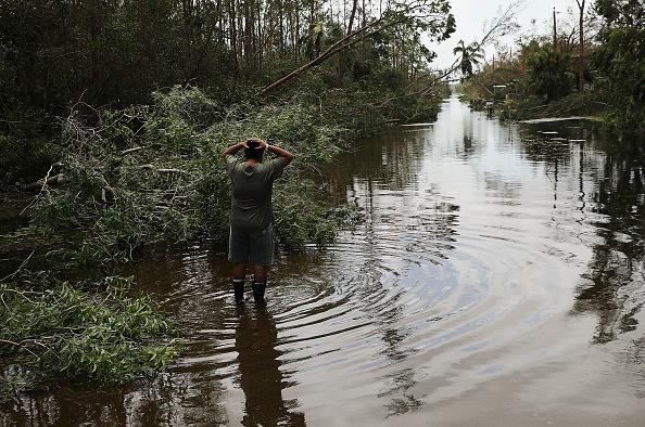 Naples - Florida「Powerful Hurricane Irma Slams Into Florida」:写真・画像(16)[壁紙.com]