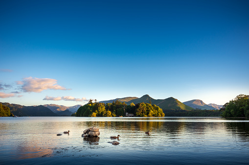 National Park「Ducks swimming on Lake Derwentwater near Keswick, England」:スマホ壁紙(4)