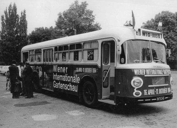 庭園「The So-Called Wig Bus Takes Visitors To The Vienna International Garden Exhibition On Wig Terrain At The Donaupark. Vienna 22. April 1964. Photograph.」:写真・画像(16)[壁紙.com]