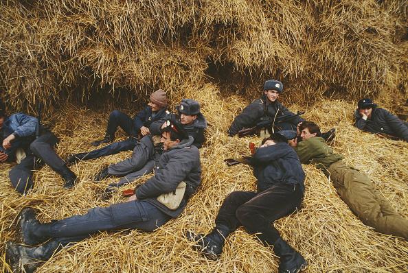 Beret「East Prigorodny Conflict」:写真・画像(1)[壁紙.com]