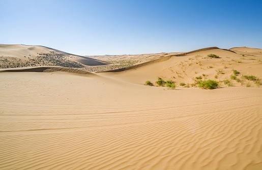 アウバリ砂海「Desert,Inner Mongolia,China」:スマホ壁紙(18)