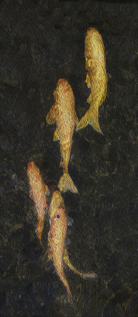 Carp「fish」:スマホ壁紙(3)