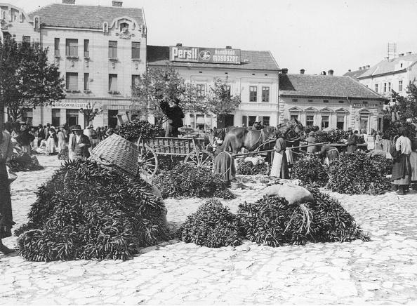 Paprika「Paprika Market」:写真・画像(16)[壁紙.com]
