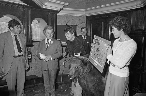 Brown Bear「Hercules The Bear Honoured」:写真・画像(16)[壁紙.com]