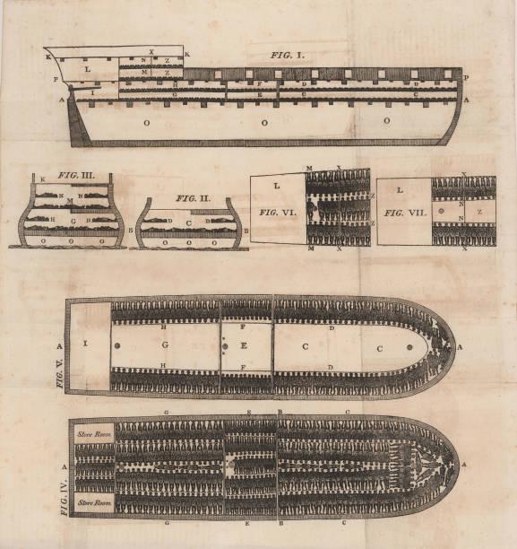 Diagram Of A Slave Ship:ニュース(壁紙.com)